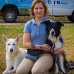 Stay Positive Animal Training profile image.