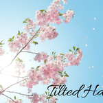 Tilted Halo Fitness LLC profile image.