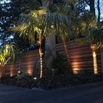 Evergreen Garden (Landscapes) ltd profile image.