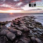 Roy Smyth Photography profile image.