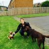 Durham Dog & Pet Services profile image
