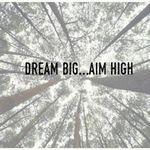 Dream Big Web Design profile image.