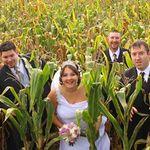 Doyle's/Wedding Connection Photography profile image.