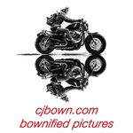 CJ Bown LLC profile image.