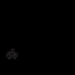 PCCO profile image.