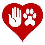 Kindred Spirits Dog Training profile image.