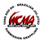 World Class Martial Arts - Boothwyn logo