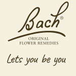 Bach Flower Consultation profile image.