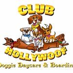 Club Hollywoof Inn & Suites Doggie DayCare and Boarding profile image.