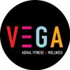 VEGA Aerial Fitness + Wellness Pop Up Studio profile image