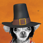 The Marketing Group profile image.