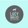 Lucy Walks profile image
