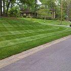 Rich Turf Lawn