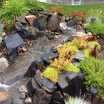 1 Call Landscaping profile image.