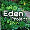 Eden Project profile image