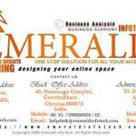 Emerald Infotech profile image.