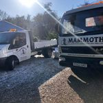 Mammoth services Ltd  profile image.