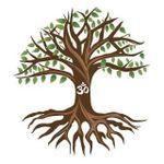 Yoga Tree Wellness Center profile image.