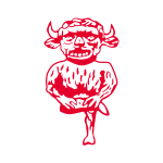 Lincoln City Football Ground profile image.