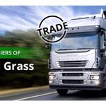 Simple Grass profile image.