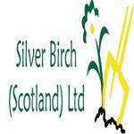 Silverbirch Scotland profile image.