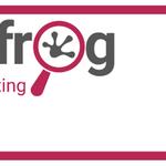 Leapfrog Internet Marketing profile image.
