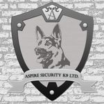 Aspire Security Limited profile image.