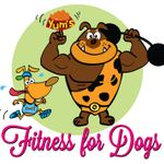 Fitness for dogs profile image.