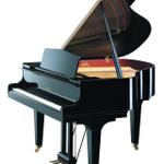 Derby School of Music profile image.