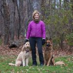 Dog Star, LLC profile image.
