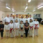 Holistic Karate profile image.