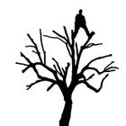Walton's Tree Services