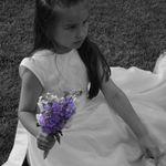 LoveBug Photography profile image.