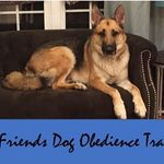 Best Friends Dog Obedience profile image.