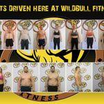 Wild bull fitness profile image.