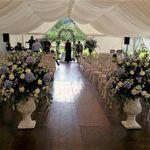 Blue Thistle Weddings profile image.