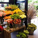 QG Floral and Landscape  profile image.