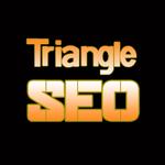 Triangle SEO profile image.
