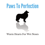 Paws to Perfection profile image.