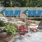 Bluejay Group of Companies profile image.