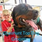 Cheshunt Top Dog Grooming