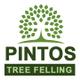 Pintos Tree Felling/Rubble Removal logo