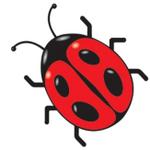 Ladybird Landscapes Durban profile image.