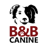 B & B Canine profile image.