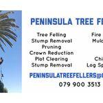 Peninsula Tree Fellers profile image.