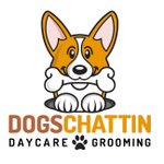 Dogs Chattin Doggy Daycare and Grooming profile image.