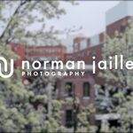 Norman Jaillet Photography profile image.