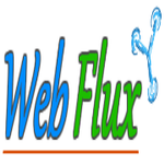 Web Flux Marketing profile image.