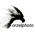 Orzel - Matt Waliszek Photo and Film profile image.