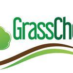 The Grasshopper Traditional Bar & Grill Clonee Village profile image.